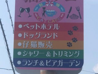 電柱サイン施工(妖精 Cat Cafe様)